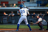 Seuly Matias (25) of the Burlington Royals at bat against the Danville Braves at Burlington Athletic Stadium on August 12, 2017 in Burlington, North Carolina.  The Braves defeated the Royals 5-3.  (Brian Westerholt/Four Seam Images)
