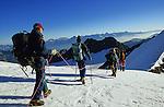 Descente de l'Ulrichshorn (3925 m)