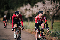 Tomasz Marczynski (POL/Lotto-Soudal) and Tim Wellens sharing a laugh over a teammate missing a corner earlier and ending up in the gras<br /> <br /> Trofeo Lloseta - Andratx: 140km<br /> 27th Challenge Ciclista Mallorca