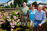Members of Rath Graveyard Committee standing by the hydrangeas in full bloom at Rath cemetery on Monday. L to r: Danny Lawlor, Anne Connelly and Billy Locke.