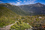 The Appalachian Trail crosses the Presidential Range from Mount Washington, in the White Mountain National Forest, NH, USA