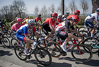 Sébastien Grignard (BEL/Lotto Soudal)<br /> <br /> 76th Dwars door Vlaanderen 2021 (MEN1.UWT)<br /> 1 day race from Roeselare to Waregem (184km)<br /> <br /> ©kramon