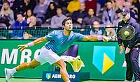 Rotterdam, The Netherlands, 12 Februari 2019, ABNAMRO World Tennis Tournament, Ahoy, first round singles: <br /> Fernando Verdasco (ESP)<br /> Photo: www.tennisimages.com/Henk Koster
