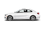 Car Driver side profile view of a 2015 BMW 2 Series 228I Sport 2 Door Coupe 2WD Side View