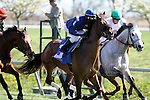 Eventual winner, Wasted Tears with Rajiv Maragh (blue cap) and Forever Together with Julien Leparoux (green cap) at the start of The Jenny Wiley (grII) at Keeneland Race Course. 04.10.2010
