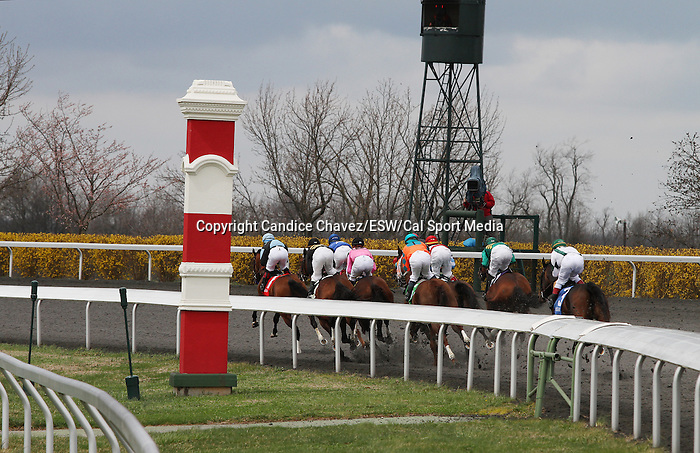 April 04, 2014: Horses coming by the stands at the start of the 4th race on Keeneland's opening day.  Candice Chavez/ESW/CSM