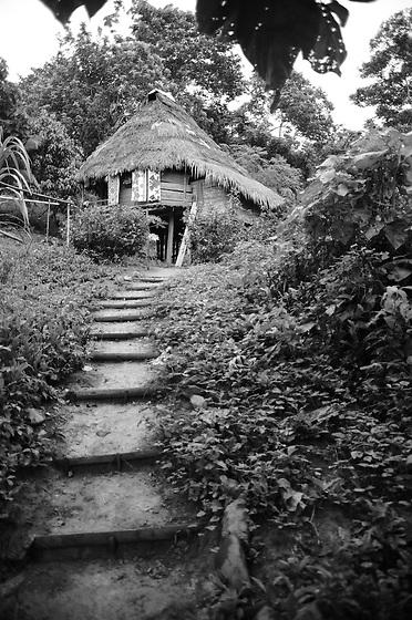 Indígenas emberá / comunidad indígena emberá, Panamá.<br /> <br /> Camino a cabaña en comunidad Emberá Purú.