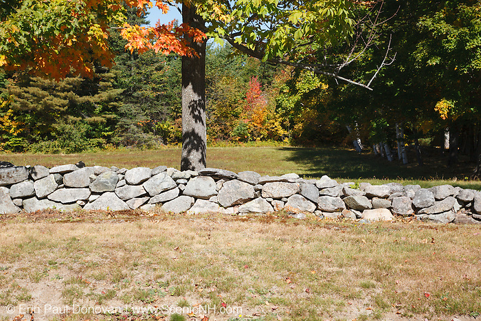 Stone wall during the autumn months in the White Mountains, New Hampshire USA