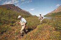 150620-JRE-7981E-0477 Cal Trout, left, and Joshua Quong, right, both teachers and quail hunting guides from Mississippi, hike into a remote interior Alaska stream to fly fish for Arctic Grayling.