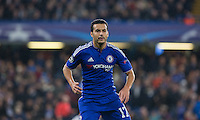 Pedro of Chelsea during the UEFA Champions League Group G match between Chelsea and Dynamo Kyiv at Stamford Bridge, London, England on 4 November 2015. Photo by Andy Rowland.