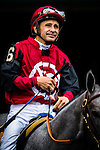 ELMONT, NY - OCTOBER 08: Mike Smith, sitting atop Big Gray Rocket, prior to the 145th Running of The Champagne, on Jockey Club Gold Cup Day at Belmont Park on October 8, 2016 in Elmont, New York. (Photo by Douglas DeFelice/Eclipse Sportswire/Getty Images)