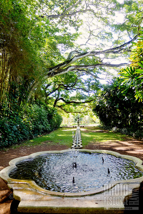 A water feature lush grounds offer a peaceful atmosphere at Allerton Gardens, Lawa'i, Kaua'i.