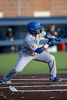 San Jose State Spartans outfielder Brandon Petersen (10) squares to bunt against the Michigan Wolverines on March 27, 2019 in Game 2 of the NCAA baseball doubleheader at Ray Fisher Stadium in Ann Arbor, Michigan. Michigan defeated San Jose State 3-0. (Andrew Woolley/Four Seam Images)
