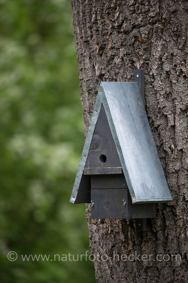 Selbstgebaute Holz-Nistkästen, Nistkasten für Vögel aus Holz, Vogelkasten, Meisenkasten selber bauen, Basteln, Bastelei, selbst bauen, selbermachen, selbstmachen