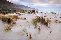 Sand dunes near Heaphy Hut, Kahurangi National Park, West Coast, New Zealand