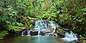 Sacred waterfall and pool in montane rain forest. Andasibe-Mantadia NP, Eastern Madagascar.