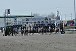 27 March 2010:  The Start of the G2 Lane's End Stakes at Turfway Park in Florence, Kentucky.