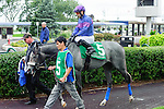 Roaming(5) with Jockey Gerry Olguin aboard at  the Natalma Stakes at Woodbine Race Course in Toronto, Canada on September 13, 2014 with Jockey Patrick Husbands aboard.