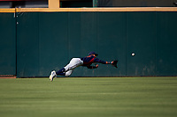 Lancaster JetHawks left fielder Manuel Melendez (19) attempts to make a diving catch during a California League game against the Inland Empire 66ers at San Manuel Stadium on May 20, 2018 in San Bernardino, California. Inland Empire defeated Lancaster 12-2. (Zachary Lucy/Four Seam Images)