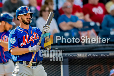 7 March 2019: New York Mets top prospect catcher Tomas Nido in action during a Spring Training Game against the Washington Nationals at the Ballpark of the Palm Beaches in West Palm Beach, Florida. The Nationals defeated the visiting Mets 6-4 in Grapefruit League, pre-season play. Mandatory Credit: Ed Wolfstein Photo *** RAW (NEF) Image File Available ***