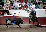 Matador on horseback spears charging bull as spectators look on