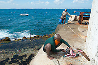 Rainbow fish filleted at Great Basses Reef Lighthouse - 8 miles offshore southwestern Sri Lanka.