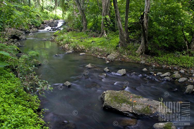 Scenic streams and waterfalls just below Kapena Falls near the Pali Highway,Oahu.
