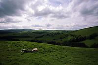 Village of Staylittle (Penffordd-Las in welsh)