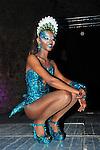 Carnaval de Sitges 2014.<br /> Reina del Carnaval.