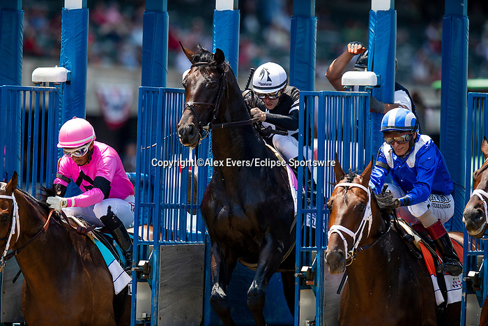 June 5, 2021: Lone Rock, #9, ridden by jockey Ramon Vazquez wins the Brooklyn Stakes on Belmont Stakes Day at the Belmont Stakes Festival at Belmont Park in Elmont, New York. Alex Evers/Eclipse Sportswire/CSM