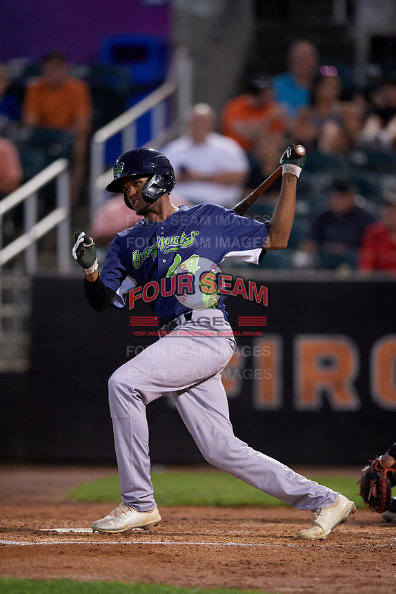 Vermont Lake Monsters Kevin Richards (24) bats during a NY-Penn League game against the Aberdeen IronBirds on August 19, 2019 at Leidos Field at Ripken Stadium in Aberdeen, Maryland.  Aberdeen defeated Vermont 6-2.  (Mike Janes/Four Seam Images)