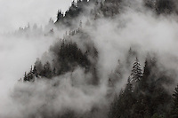 Fog shrouds steep cliffs in Southeast Alaska.