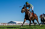 September 7, 2019 :Morticia #7, ridden by Tyler Gaffalione, wins the Spendthrift Farm Ladies Sprint during racing at Kentucky Downs in Franklin, Kentucky. Scott Serio/Eclipse Sportswire/CSM