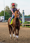 LOUISVILLE, KY - MAY 02: Promises Fulfilled  at Churchill Downs on May 2, 2018 in Louisville, Kentucky. (Photo by Alex Evers/Eclipse Sportswire/Getty Images)