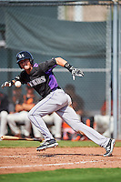 Colorado Rockies Tyler Bugner (67) lays down a bunt during an Instructional League game against the San Francisco Giants on October 8, 2016 at the Giants Baseball Complex in Scottsdale, Arizona.  (Mike Janes/Four Seam Images)