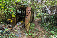 BNPS.co.uk (01202 558833)<br /> Pic: MaxWillcock/BNPS<br /> <br /> Pictured: The shed and greenhouse.<br /> <br /> An abandoned cottage that is covered by undergrowth and looks like something out of a horror film has sold for a whopping £430,000.<br /> <br /> The derelict property, called Grasshopper Cottage, had a valuation of £275,000 before it went up for sale at auction.<br /> <br /> But due to the current state of the property market where demand far outstrips supply, interest and bidding in the 150-year-old cottage took off.