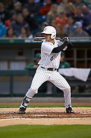 Josh Haney (6) of the Charlotte 49ers at bat against the Clemson Tigers at BB&T BallPark on March 26, 2019 in Charlotte, North Carolina. The Tigers defeated the 49ers 8-5. (Brian Westerholt/Four Seam Images)