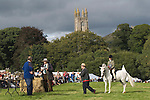 Widecombe Fair Widecombe in the Moor Dartmoor Devon Uk. Prize giving.  The church of Saint Pancras, its not falling over it just looks like it!