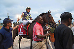 Hallandale Beach, FL- February 06: Paco Lopez and #1 Lukes Alley after winning the Gulfstream Park Turf Handicap. Scenes from Donn Handicap Day at Gulfstream Park. (Photo by Arron Haggart)