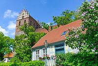 Fachwerkhaus und Marienkirche, Angermünde, Uckermark, Brandenburg, Deutschland
