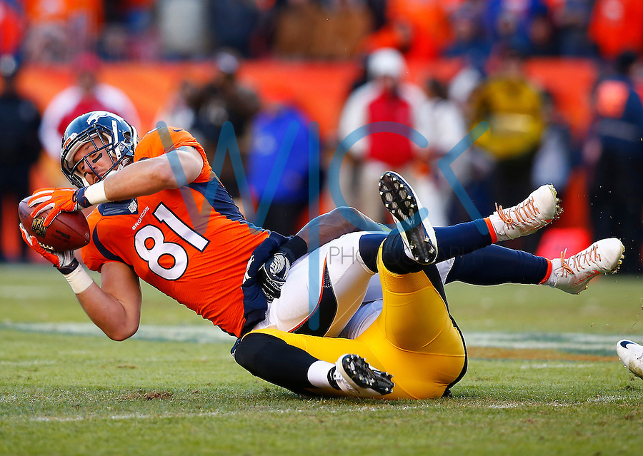 Owen Daniels #81 of the Denver Broncos catches a pass against the Pittsburgh Steelers in the second quarter during the AFC Divisional Round Playoff game at Sports Authority Field at Mile High on January 17, 2016 in Denver, Colorado. (Photo by Jared Wickerham/DKPittsburghSports)
