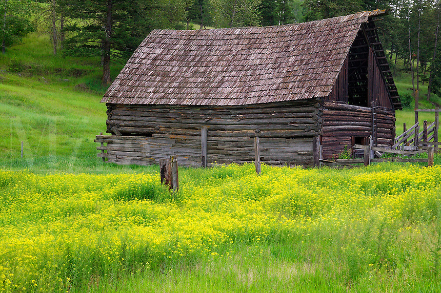 An old barn along Highway 1, British Columbia, Canada