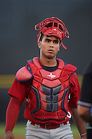 Palm Beach Cardinals catcher Chris Rivera (25) during a game against the Dunedin Blue Jays on April 15, 2016 at Florida Auto Exchange Stadium in Dunedin, Florida.  Dunedin defeated Palm Beach 8-7.  (Mike Janes/Four Seam Images)