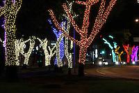 SÃO PAULO, SP, 10 DE DEZEMBRO DE 2011.  NATAL ILUMINADO. Alamedas arborizadas já iluminadas para o NATAL. Av. Sumaré, zona oeste de SP. (FOTO: MILENE CARDOSO / NEWS FREE)