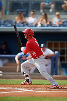 Palm Beach Cardinals Jose Martinez (15) bats during a Florida State League game against the Charlotte Stone Crabs on April 14, 2019 at Charlotte Sports Park in Port Charlotte, Florida.  Palm Beach defeated Charlotte 5-3.  (Mike Janes/Four Seam Images)