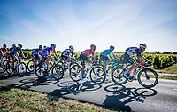 rolling in behind the peloton<br /> <br /> Stage 10 from île d'Oléron (Le Château-d'Oléron) to Île de Ré (Saint-Martin-de-Ré)(169km)<br /> <br /> 107th Tour de France 2020 (2.UWT)<br /> (the 'postponed edition' held in september)<br /> <br /> ©kramon