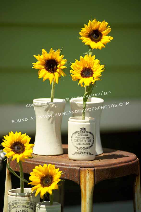 Antique and collectable stores offer all manner of everyday objects that can find new life as vases and stem holders for flowers.  Here, single stems of sunflowers rest in old British crocks set out on a well-used stepladder.  A wooden bench, striped ticking pillow, a cozy throw, and a good book complete the backyard scene.
