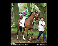 As seen in the Arabian Horse Galleries exhibit at The Kentucky Horse Park<br /> <br /> Tu For All  .The Delaware Park Season Opener .