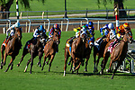 ARCADIA, CA. SEPTEMEBER 29:  #6 Vasilika, ridden by Flavien Prat, and #8 Cambodia, ridden by Drayden Van Dyke, fight for the lead in the Rodeo Drive Stakes (Grade l) on September 29, 2018, at Santa Anita Park in Arcadia, CA. (Photo by Casey Phillips/Eclipse Sportswire/CSM)