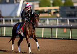 October 30, 2019: Breeders' Cup Juvenile Fillies entrant Perfect Alibi, trained by Mark E. Casse, exercises in preparation for the Breeders' Cup World Championships at Santa Anita Park in Arcadia, California on October 30, 2019. Carolyn Simancik/Eclipse Sportswire/Breeders' Cup/CSM